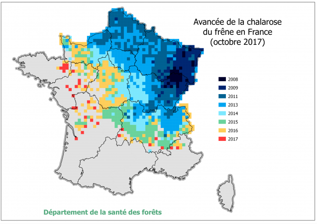 Avancée de la Chalarose en France, situation Octobre 2017 (Source DSF) (png - 616 Ko)